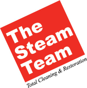 TheSteamTeamLogo